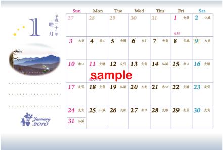 2010_sample2