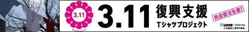 311t500b